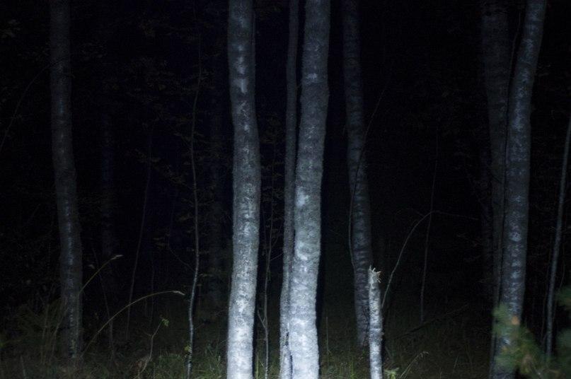 Отчет о пеше-водном походе по Ленинградской области