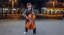 Ed Sheeran - Shape of You cello cover - HBF LIVE SESSION