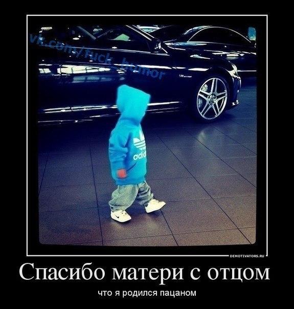 самые клевые аватарки: