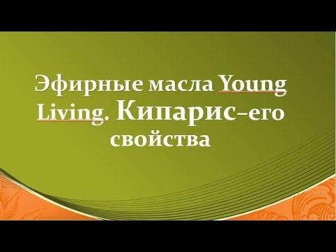 Эфирное масло кипариса Young Living Его свойства