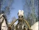 Три белых коня - песня из фильма «Чародеи», 1982