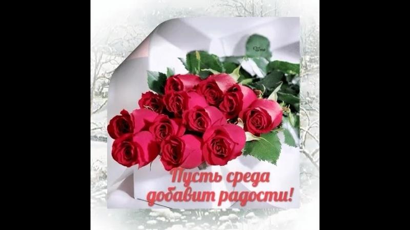 Doc229955695_460597943.mp4