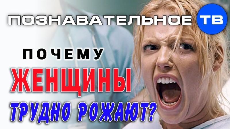 Почему женщины трудно рожают Познавательное ТВ Владимир Базарный