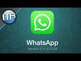 Опубликован обзор WhatsApp для iOS 7