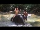 актриса Наталия Балясова в Instagram «Слонёнок Виго 🐘