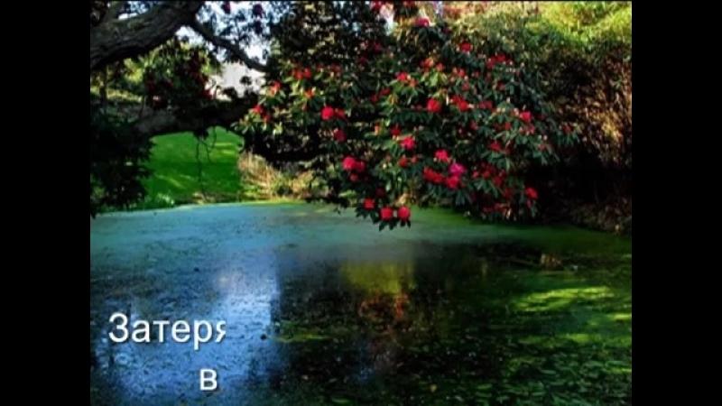 виды прекрасно. садов под музыку