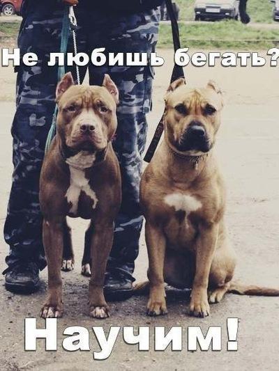 Марк Нигиптян, 18 августа , Апостолово, id139315166