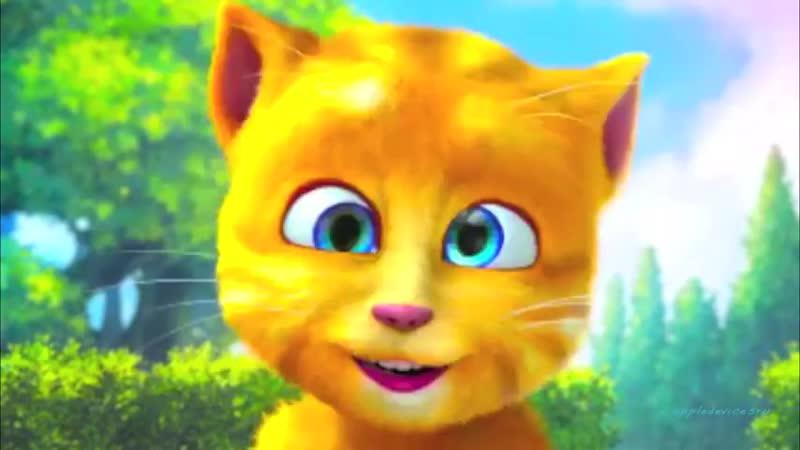 Прикол - смешной и прикольный котенок забавный котик кот кошка - Мультик для дет