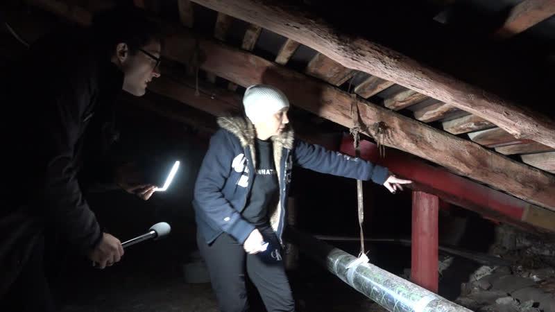 Кровавая луна потолок на полу и академический Мортал Комбат Отдел происшествий 20 01 2019 Невские новости