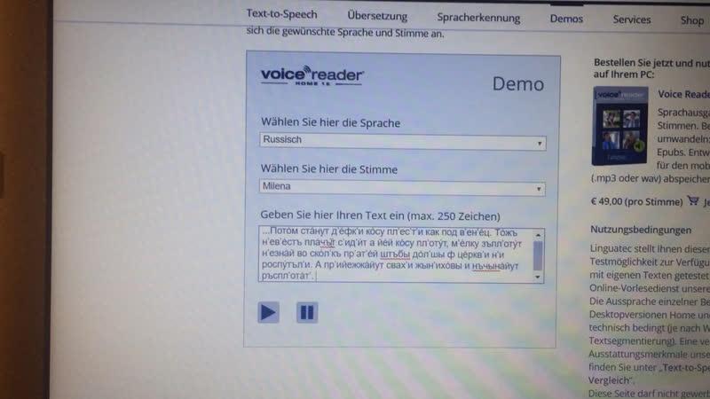 Voice reader