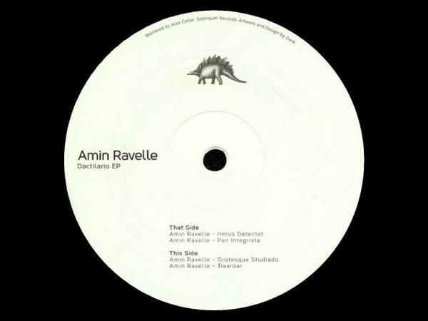 Amin Ravelle - Grotesque Studiado [SOBR007]