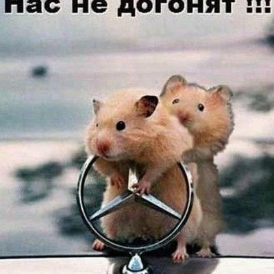 Ххх Ххх, 6 августа , Санкт-Петербург, id92028468
