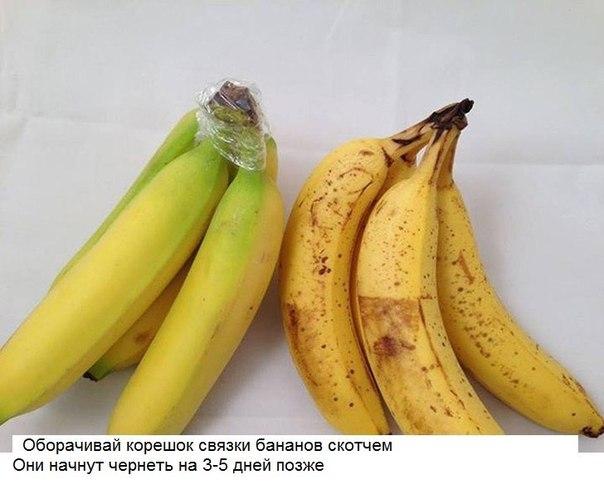 http://cs14111.vk.me/c7008/v7008306/2b4cf/cJneII1etmE.jpg