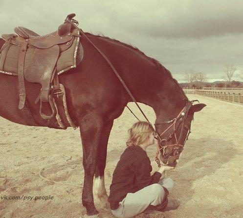 """Есть старая индейская поговорка: «Лошадь сдохла – слезь». Казалось бы, всё ясно, но… 1. Мы уговариваем себя, что есть ещё надежда 2. Мы бьём дохлую лошадь сильнее 3. Мы говорим: """"мы всегда так скакали"""" 4. Мы организовываем мероприятие по оживлению дохлых лошадей 5. Мы объясняем себе, что наша дохлая лошадь гораздо лучше, быстрее и дешевле 6. Мы сидим возле лошади и уговариваем её не быть дохлой 7. Мы покупаем средства, которые помогают быстрее скакать на дохлых лошадях 8. Мы изменяем…"""