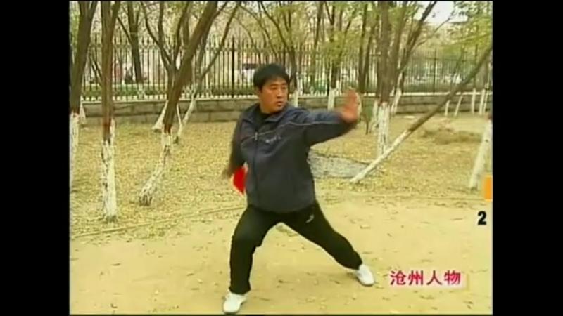 Ученик Ван Чжихая Чжан Цзянь демонстрирует пигуа дао.