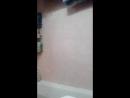 Игорь Шутин - Live