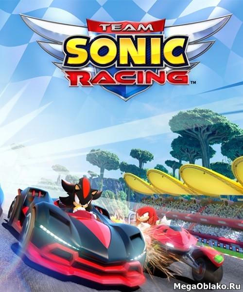 Team Sonic Racing (2019/RUS/ENG/RePack)