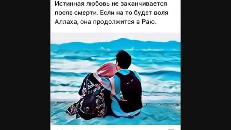 Шахриёр Давлатов - Тамоми умр(360P).mp4