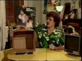 AL TV (Pilot) 22021984 - Weird Al Yankovic