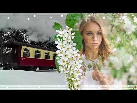 Проект Прошоу Продюсер Скорый поезд