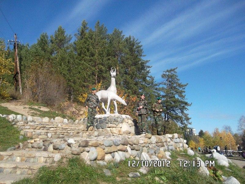 Фото на память на фоне знаменитых оленей в Белокурихе
