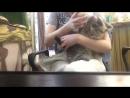 Лилу малышка из контактного зоопарка Лукоморье в тц Калинка