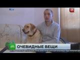В Уфе слепого заставили купить билет на автобус для собаки поводыря