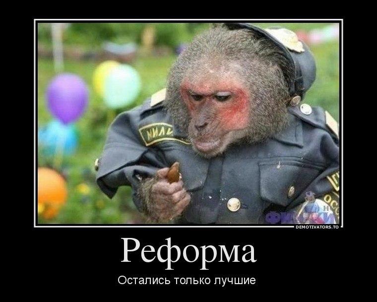Так как картинки землетрясений в россии под