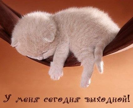 Ленуся Колесникова, Санкт-Петербург - фото №5