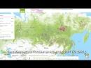 Путин сбагрил китайцам весь лес Сибири - YouTube