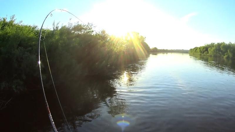 Огромные ЯЗИ живут в этой незнакомой речке. Рыбалка сплавом.