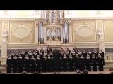 Амурские волны (музыка М. Кюсса, сл. К. Васильева и С. Попова). Видео - Анна Куликова.