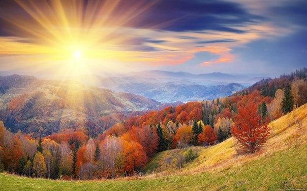 гармония Осени...
