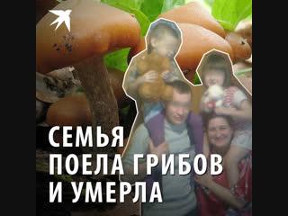 В Подмосковье семья поела грибов и умерла