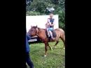 катаемся на лошадке)