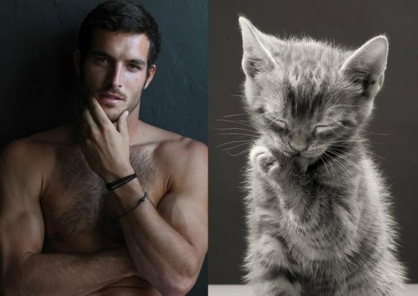 А КАКОЙ ТЫ КОТИК МУЖЧИНА - КОТ Кот это маленький мужчина в шубке. А мужчина это большой кот, которого приятно гладить. У них много общего: и те и другие непредсказуемы, любят ласку, ждут, что их