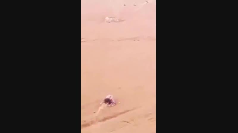 Сьмка с дрона 2016 год, уничтожена шахид машина террористов ИГ из ПТУР c позиции SDF.