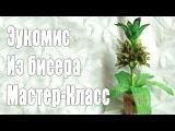Цветок эукомис из бисера мастер-класс