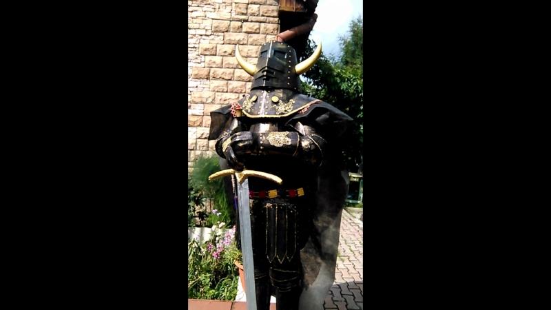 Рыцарь 1