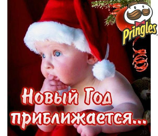 http://cs403018.vk.me/v403018782/d60b/nkvQN07M888.jpg
