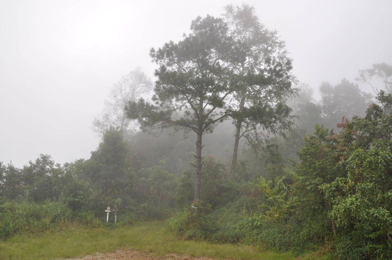 Национальный парк Доисутхеппуи