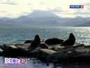 Вести.ru. Эфир от 29.05.2013