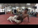 Banchamek Gym Muay Thai Buakaw gym
