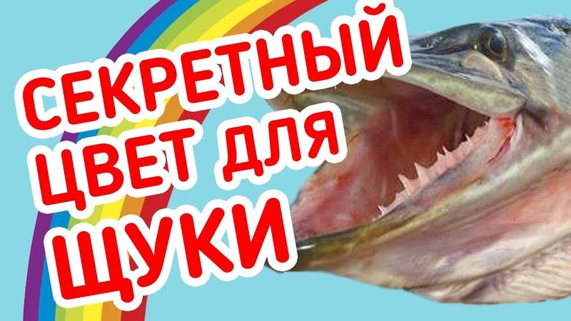 СЕКРЕТНЫЙ цвет приманки на ЩУКУ! Рыбалка на микроджиг с берега.