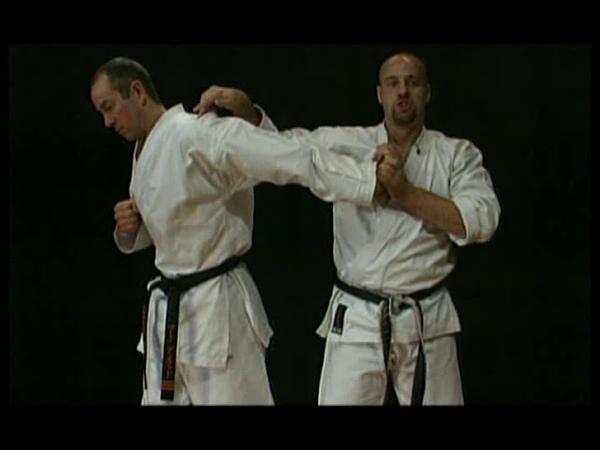 Bunkai Jutsu Practical Karate Kata Applications