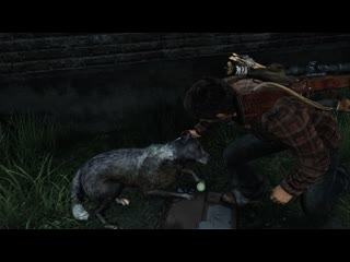 You can pet the dog in the last of us