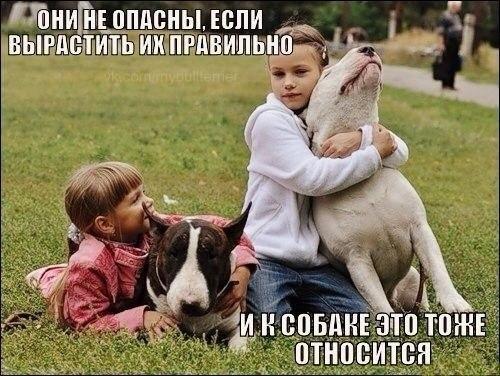 Фото №456378295 со страницы Катерины Мироновой