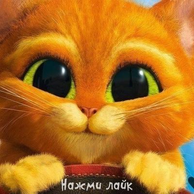Артём Павлов, 27 июня 1987, Лубны, id65617627
