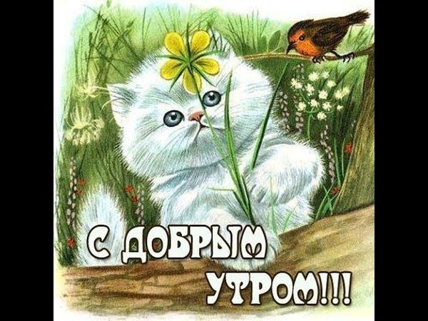С добрым утром! Понедельник. /Доброго ранку! Понеділок. / Good morning! Monday.