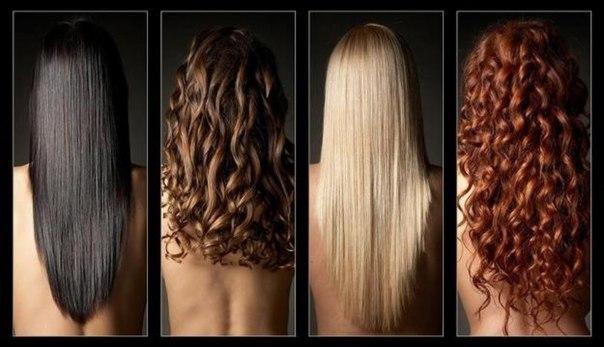 Масса интересной информации «закодирована» и в цвете волос.       Для начала определите цвет своих волос: